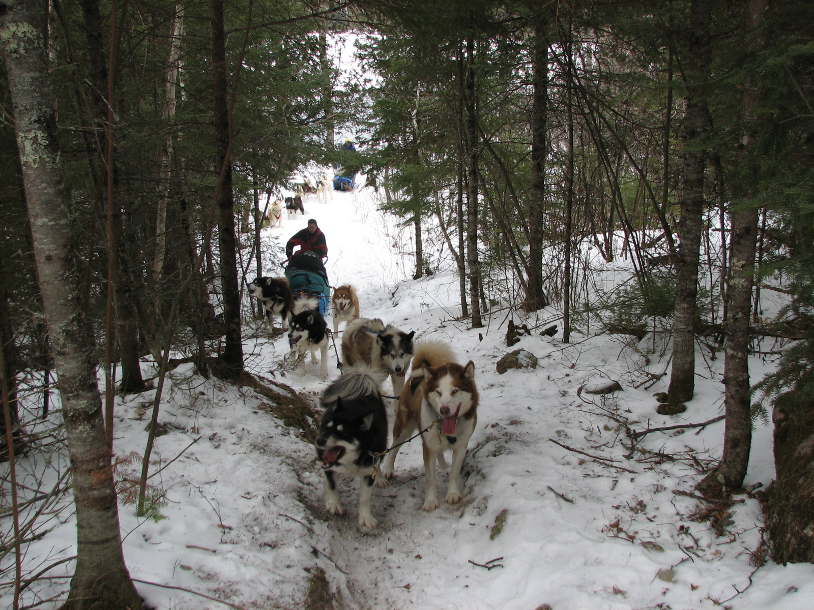 Tough Portage while Dog Sledding