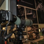 Swarovski Spotting Scopes are great for Digiscoping too