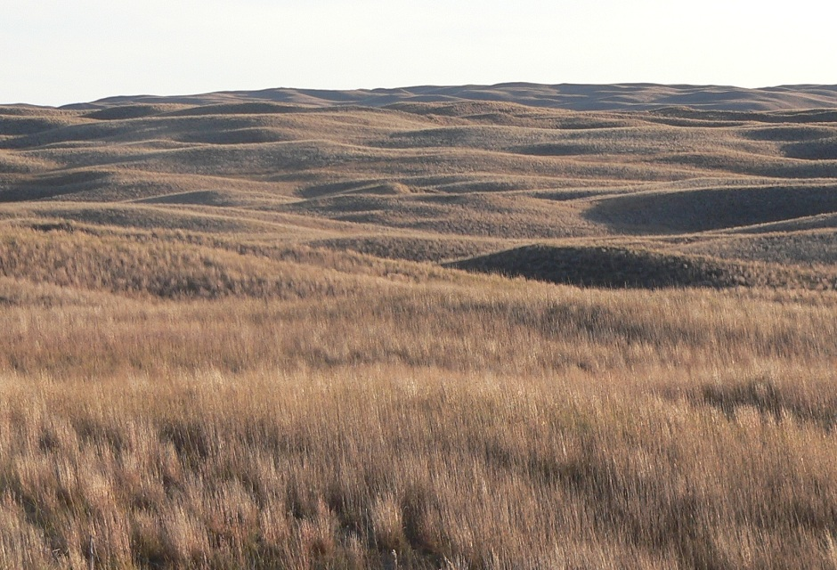 Nebraska Sandhills are great for hunting!