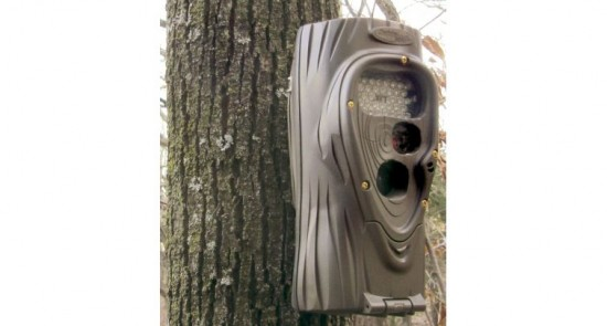 opplanet-cuddeback-attack-infrared-trail-camera-1156-mounted
