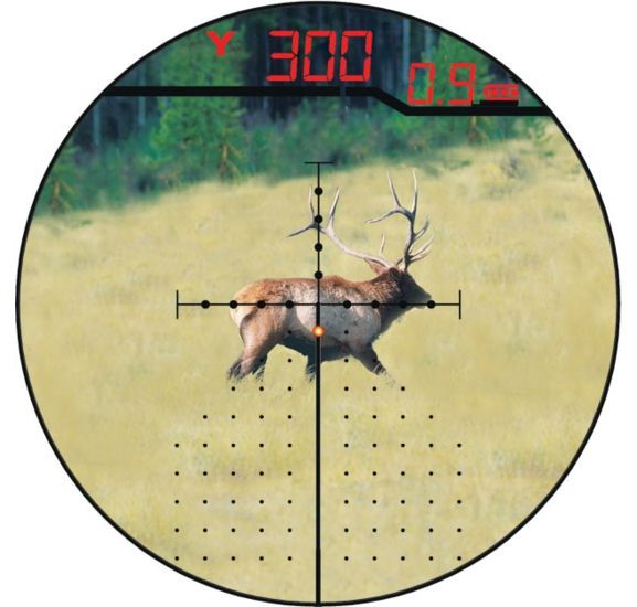 View through a laser rangefinder scope