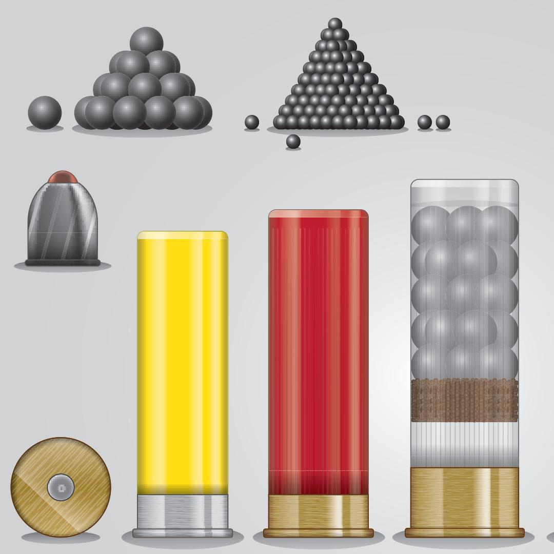 Variety of shotgun shell ammunition.