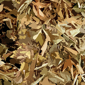 woodland hunting camo pattern with brown leaves